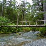 8 Bridge over salmon waters